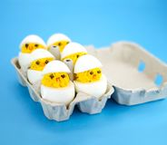 Six cute eggs in a box Royalty Free Stock Images