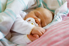 Six day old infant. Six day old infant sleeping with her dummy Stock Image
