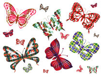 Six different butterflies with Celtic ornament Royalty Free Stock Photography