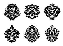 Six different floral arabesque designs Royalty Free Stock Photography