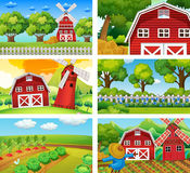 Six different scenes of farm. Illustration Stock Photography