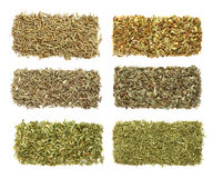 Six dried herbs in rows Royalty Free Stock Photo