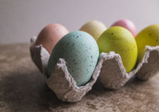 Six Dyed Easter Eggs in paper carton Royalty Free Stock Photos