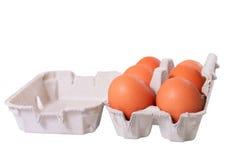 Six eggs. Stock Photo