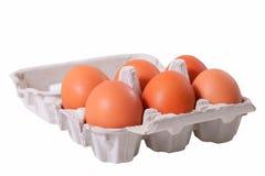 Six eggs. Royalty Free Stock Photo