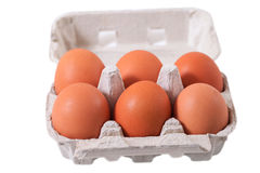 Six eggs. Royalty Free Stock Image