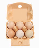 Six Eggs. In cardboard box, isolated on white background Stock Images