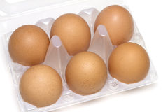Six eggs in box Stock Image