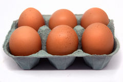 Six eggs Stock Photography