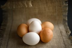 Six eggs at a canvas on a dark background royalty free stock photography