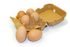 Six eggs with carton. Six brown eggs displayed with the box / carton. Focal point is the two eggs in front Stock Image