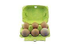 Six eggs in carton box stock image