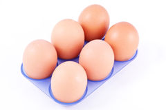 Six eggs in container Stock Photos