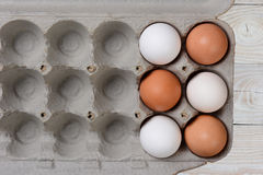 Six Eggs in Large Carton Stock Images