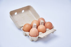 Six eggs in paper box Stock Photography