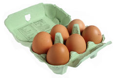 Six eggs in a papier mache egg box Stock Image