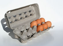 Six eggs short. Six brown eggs in a carton Stock Images