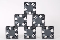Six fans Stock Photos