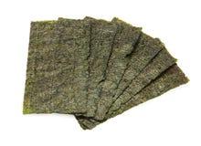 Six feuilles d'algue Photos stock
