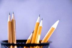 Six fonds pourpres de crayons simples avec l'espace de copie Foyer s?lectif photos libres de droits