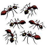 Six fourmis illustration stock