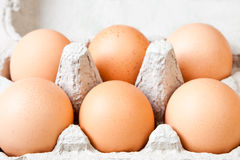 Six fresh eggs Royalty Free Stock Images