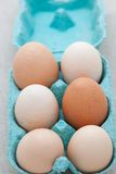Six fresh eggs in a box Stock Photography