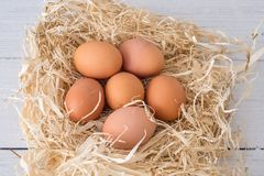 Six Fresh Scottish Produced Eggs on a bed of Straw. Six Fresh Scottish Eggs on a bed of straw produce from Scotland and promoting fresh dairy produce for healthy royalty free stock image
