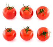Six fresh tomatos covered with water drops isolated Royalty Free Stock Images