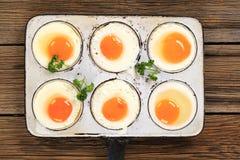 Six fried eggs Royalty Free Stock Photo