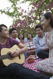 Six friends having a picnic and hanging out in the park, playing guitar and talking Stock Photos