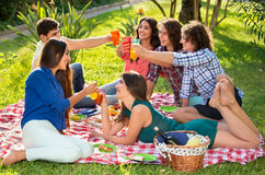 Six friends toasting on a picnic blanket Stock Photos