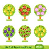 Six fruit trees Stock Photos