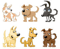 Six funny dogs. Six funny different dogs vector illustration