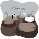 Six geese a laying - Twelve Days of Christmas Royalty Free Stock Image