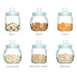 Six glass jars with cereals in them Stock Photography