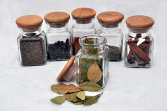 Six glass of spice and bay leaf poured out Royalty Free Stock Photo