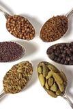 Six graines d'épice Images stock