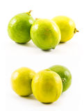 Six green and yellow lemons composed on a white background Royalty Free Stock Images