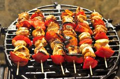 Six Grilled Meat Skewers on the BBQ. Ready to eat family barbacue Royalty Free Stock Photos