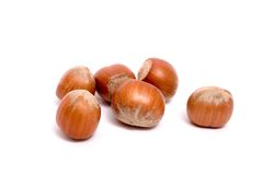 Six hazelnuts Stock Images