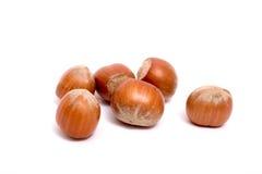 Six hazelnuts. Isolated on white Stock Images