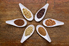 Six  healthy, gluten free grains. Six healthy, gluten free grains (quinoa, brown rice, teff, buckwheat, sorghum. kaniwa), top view of small spoons against rustic Stock Image
