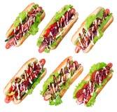 Six hotdogs stock image