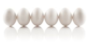 Six isolated chicken eggs Royalty Free Stock Photo