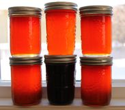 Six jars of jelly. Just attractive canning on the shelf stock photo