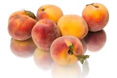 Six juicy peaches Stock Image