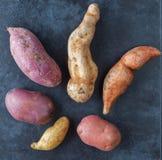 Six kinds of potatoes on grunge surface. Six kinds of potatoes on dark grunge surface. Top view Royalty Free Stock Photos