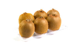Six kiwi Royalty Free Stock Photos