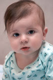 Six Month Baby. Looks on camera Stock Photography